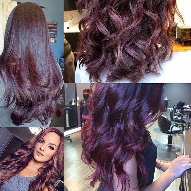 لون صبغة جديد اسمه Chocolate Mauve يعني لونه بني مع ضي البنفسجي Hijabstreetfashion Hairtips Hair Chocolatemauve Cho Long Hair Styles Hair Styles Hair