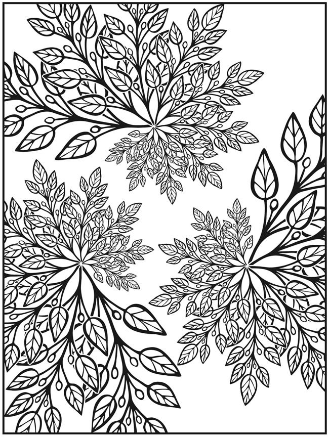 Welcome To Dover Publications Creative Haven Nature Fractals Coloring Book Coloring Pages Flower Coloring Pages Dover Coloring Pages