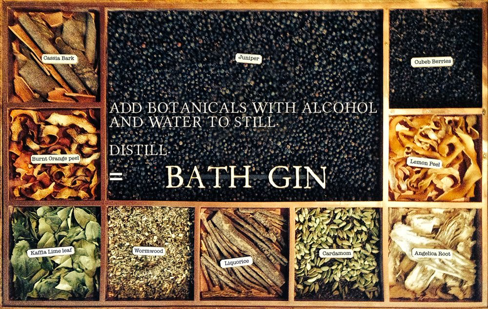 Bath gin tasting