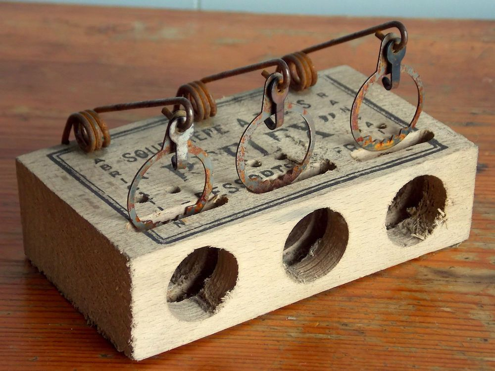 how to set a spring mouse trap