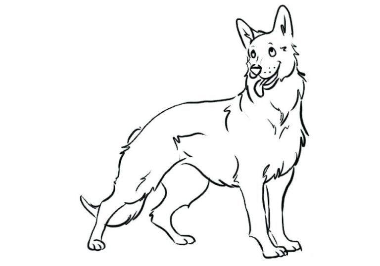 German Shepherd Coloring Pages Best Coloring Pages For Kids In 2020 Puppy Coloring Pages Dog Coloring Page German Shepherd Colors