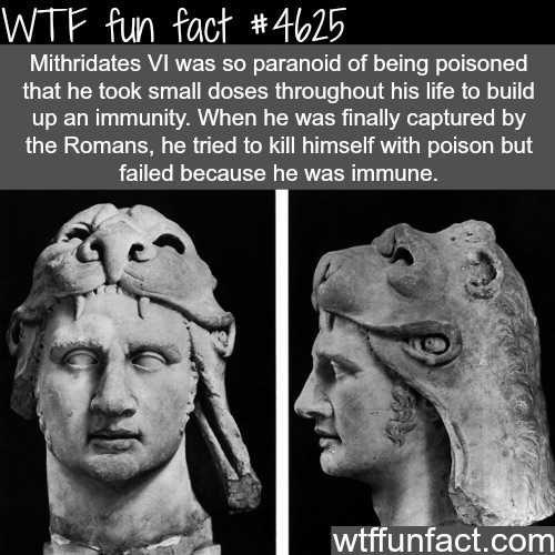 Weird History Facts 11