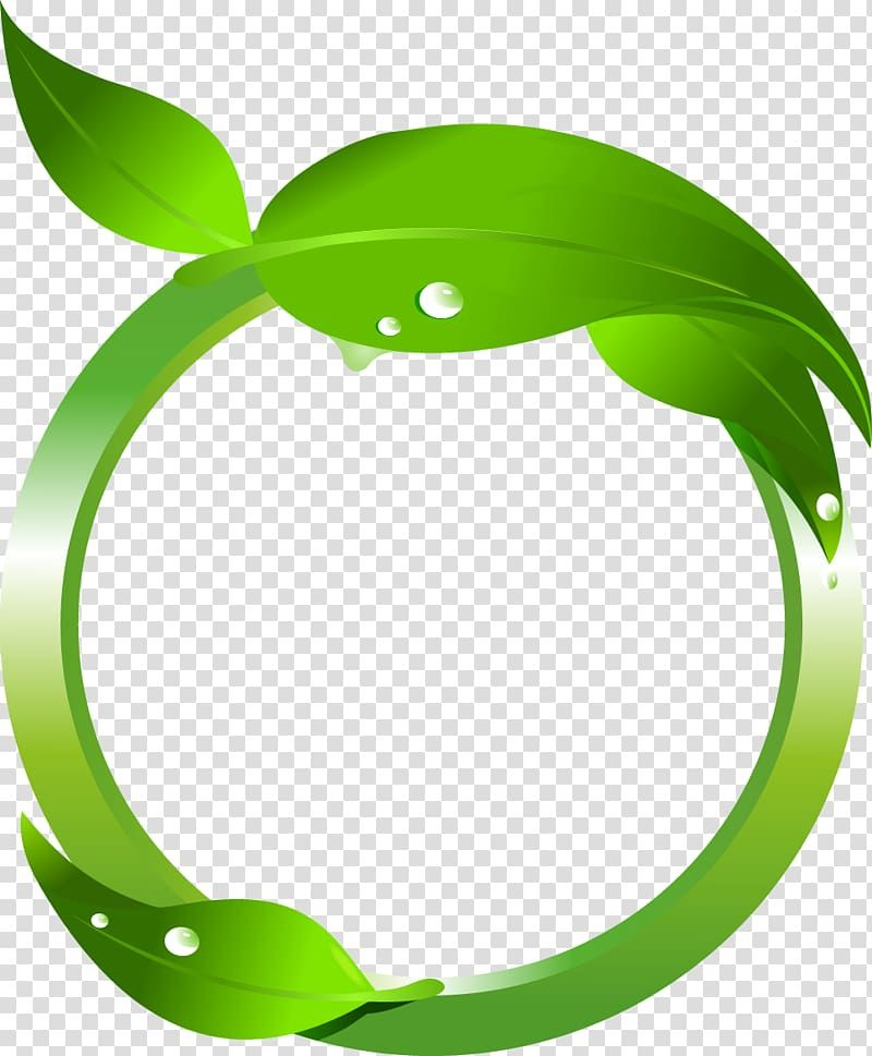Green Leaf Illustration Maple Leaf Green Green Leaves Transparent Background Png Clipart Leaf Illustration Leaf Drawing Fall Leaves Drawing