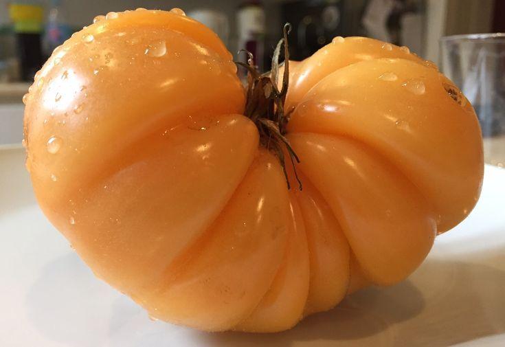 Recuperer Les Graines De Tomates Et Les Conserver Tomates