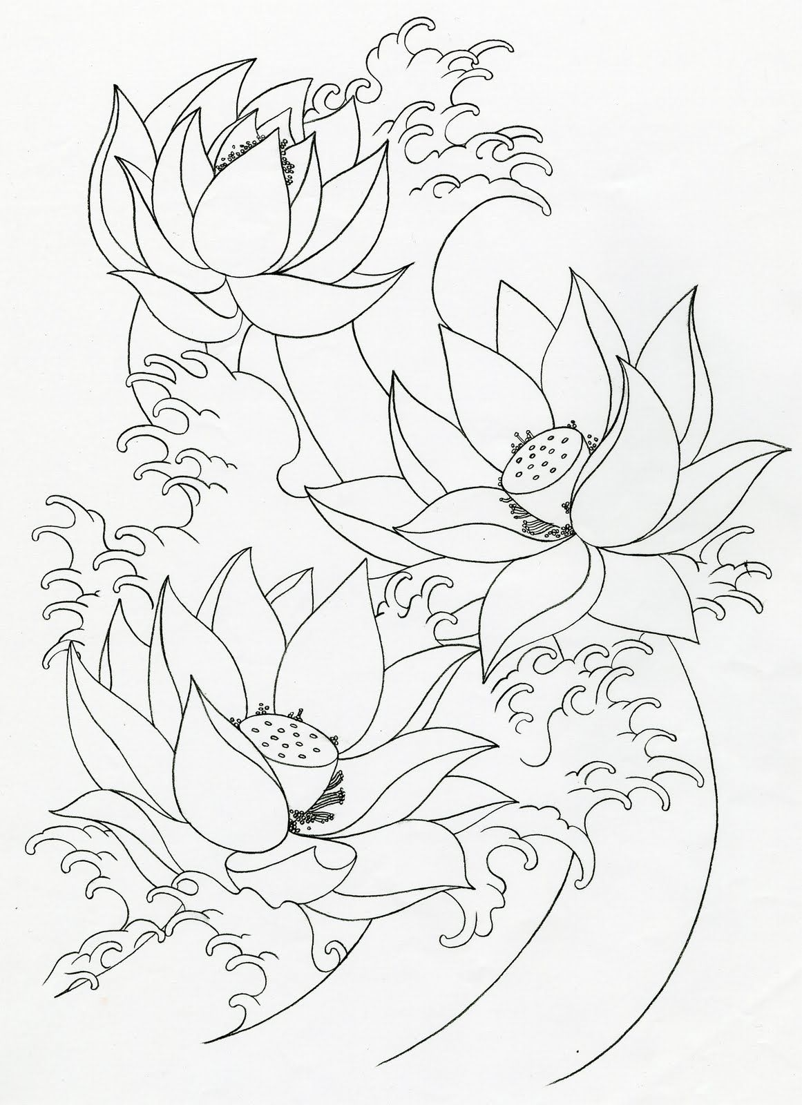 Lotus Flower Tattoos Free Tattoo Ideas Lotus Flower Tattoo Design Flower Tattoo Drawings Lotus Flower Drawing