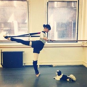 Black or Royal Blue Flexi Stretcher (Luciana Voltolini of American Ballet Theatre)