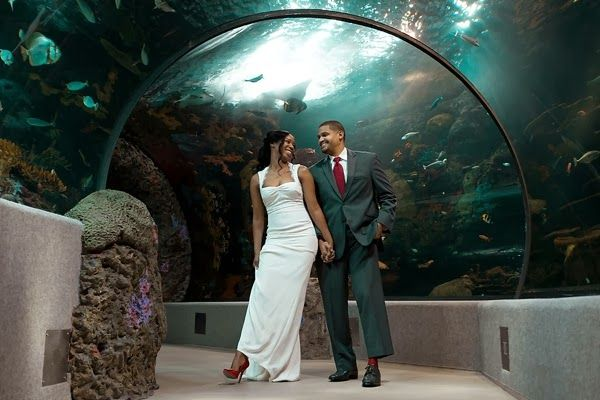 Virginia Aquarium Anniversary Session By The Tyler Tidewater And Tulle A Wedding Blog
