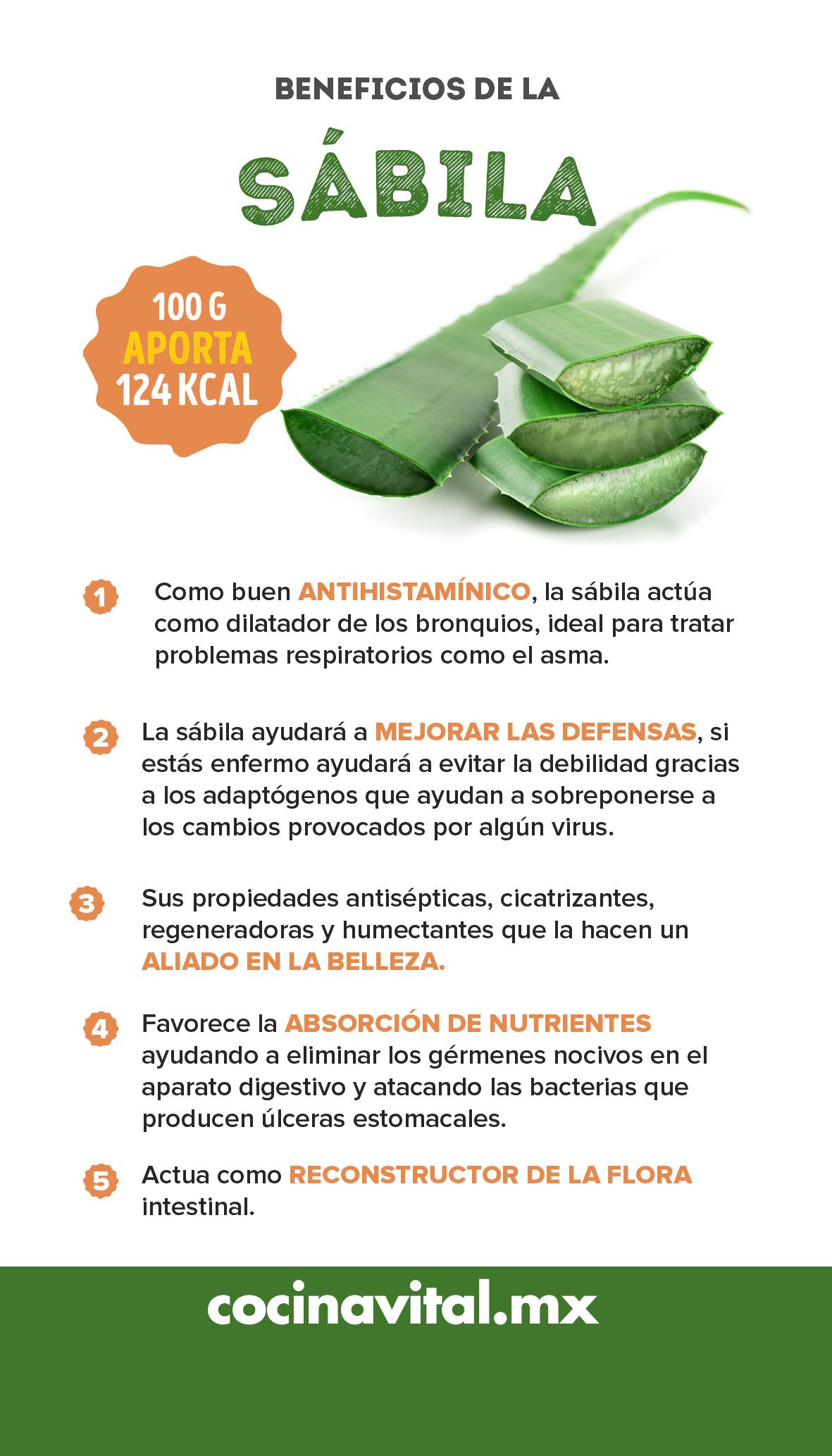 8 Grandes Beneficios De Consumir Sábila O Aloe Vera Cocina Vital Qué Cocinar Hoy Beneficios De Alimentos Nutrición Frutas Y Verduras Beneficios