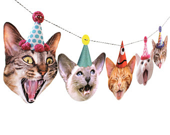 Quirky pet-loving decor, clothes and accessories by RawBoneStudio