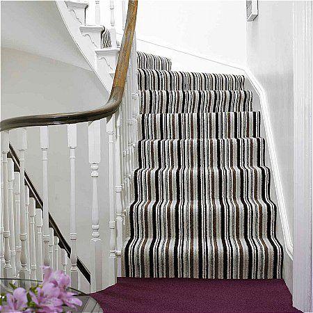 Flooring One Cosmopolitan Carpet Collection