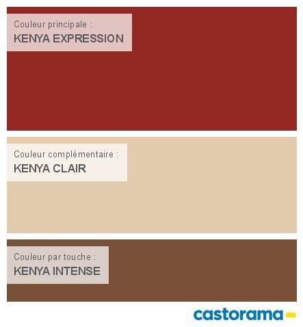 Castorama Nuancier Peinture Mon Harmonie Peinture Kenya