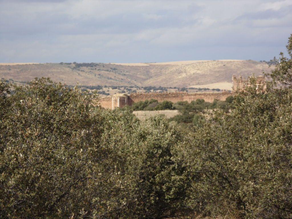 SAN MARTÍN DE MONTALBÁN (Toledo). Castillo de Montalbán.