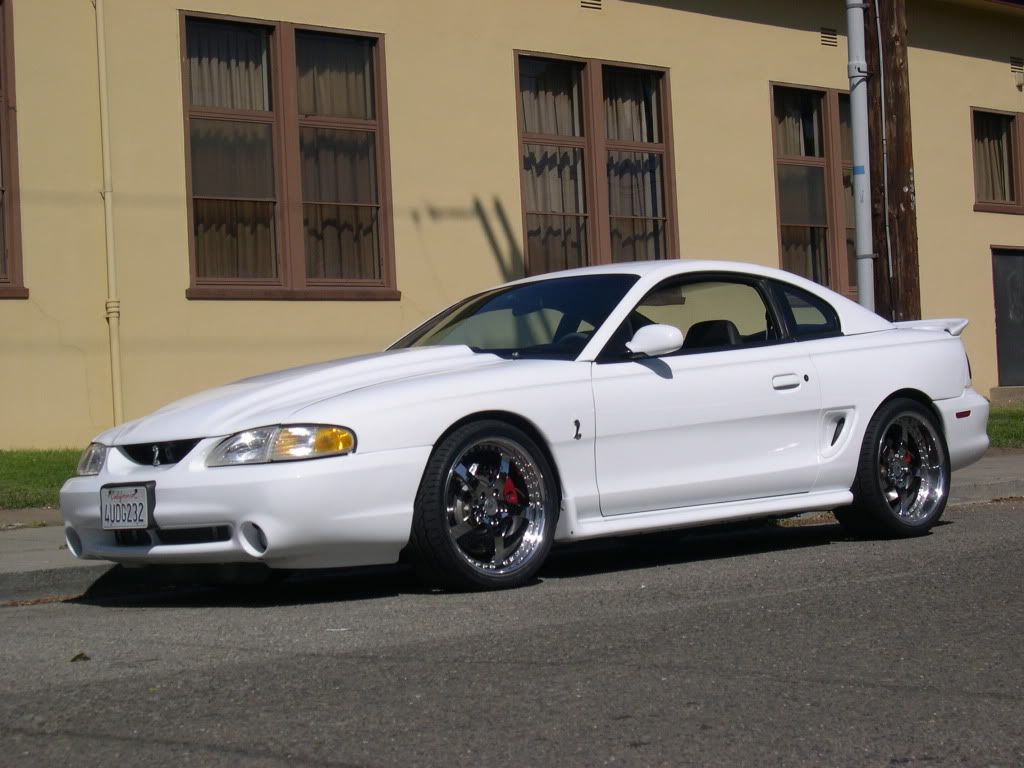 Foose Google Wheels Search Sn95 - Mustang With