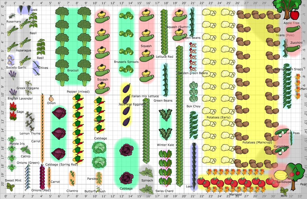 Large Vegetable Garden Layout With Images Garden Layout