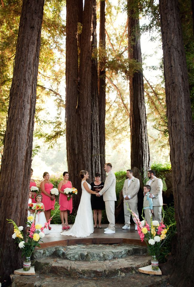 Santa Cruz Mountains Wedding I M The Proud Momma
