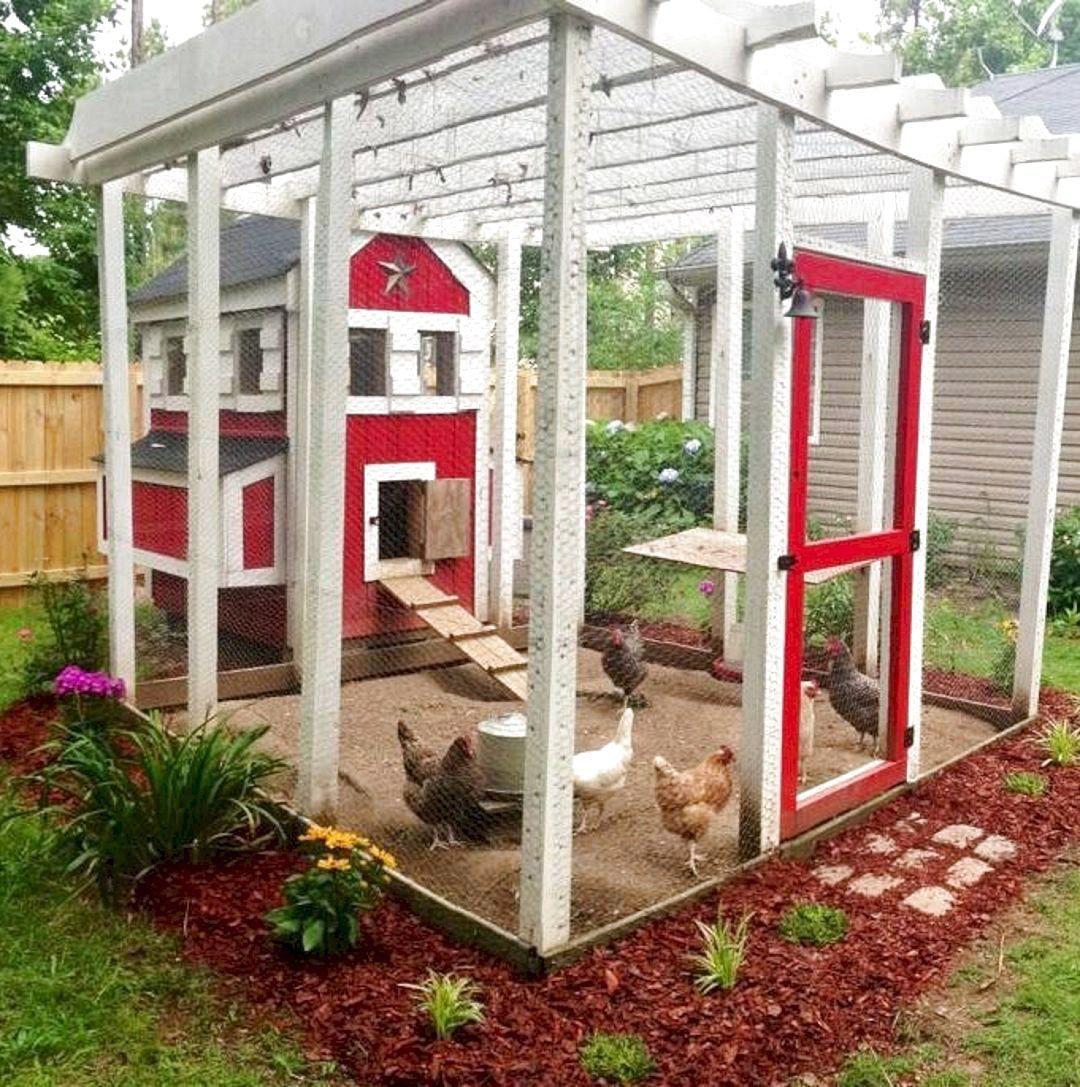 40 Special Chicken Run Ideas For Your Garden Decoration Home Garden Backyard Chicken Coops Chickens Backyard Chicken Coop Designs