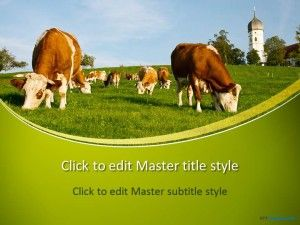 Free cows ppt template projects to try pinterest ppt free cows ppt template toneelgroepblik Images