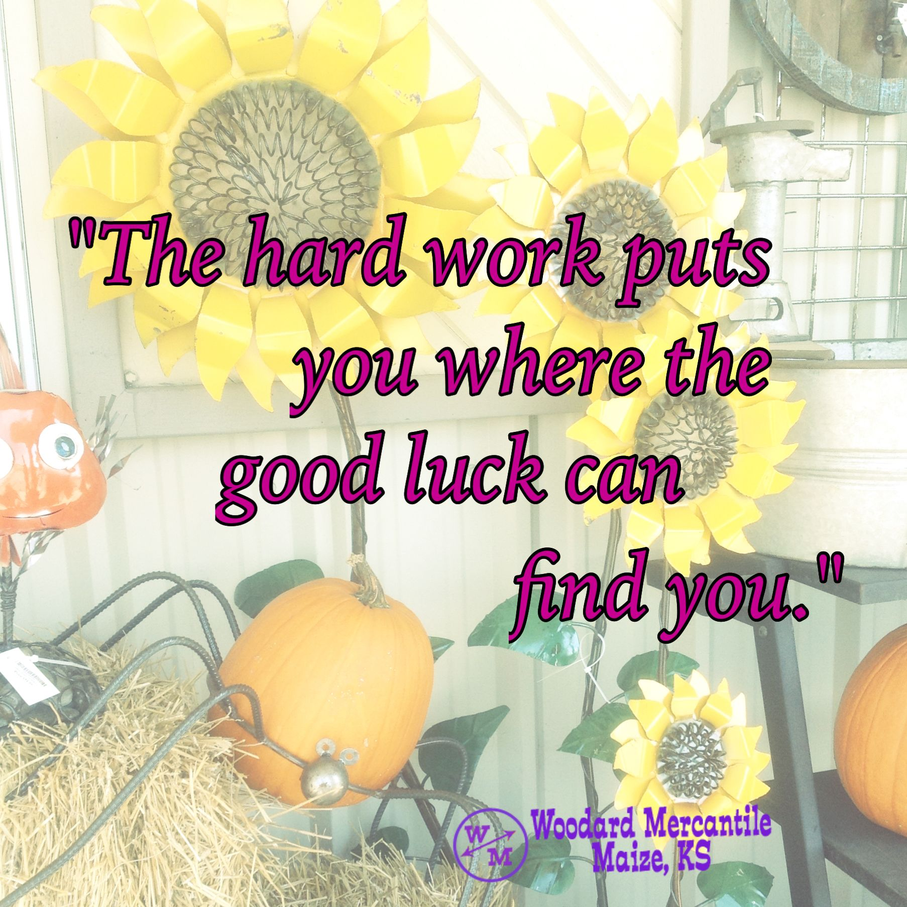 the hard work puts you where the good luck can you words the hard work puts you where the good luck can you
