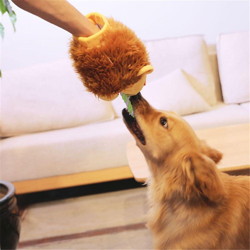 Info's : Molar Bite Interactive Dog Chew Toy Ball