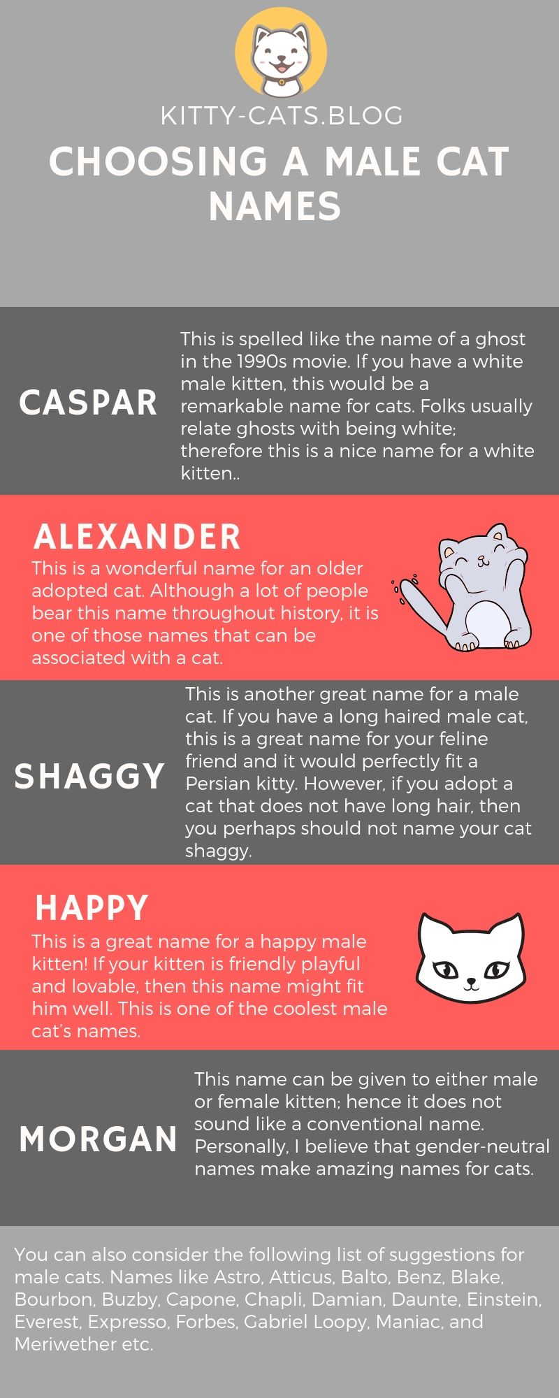 Choosing A Male Cat Names Female Cat Names Kitty Cats Blog Cat Names Cat Noises Cats And Cucumbers