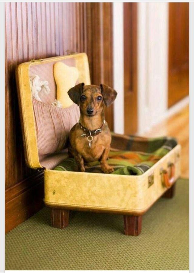 repurpose furniture dog. Repurpose Furniture Dog