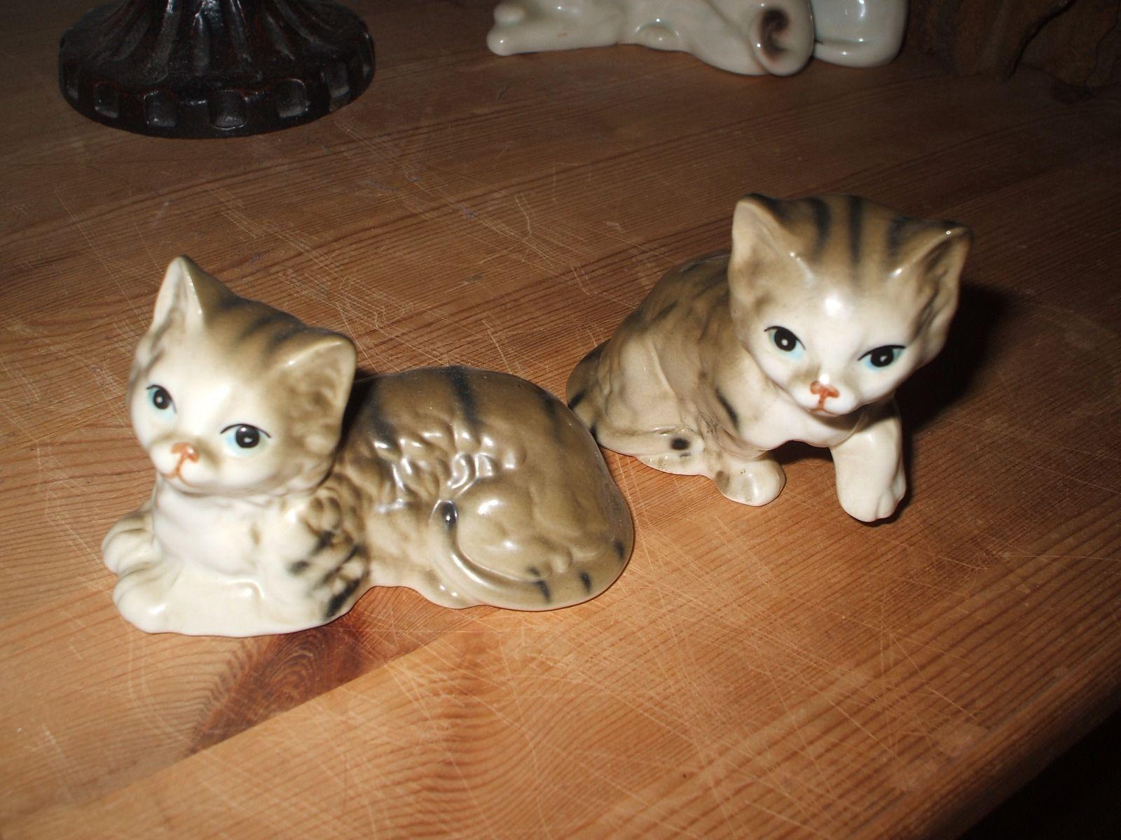 Ebay Katzen
