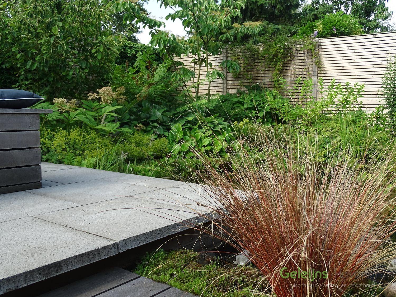 Verhoogd terras schellevis google zoeken outdoor living