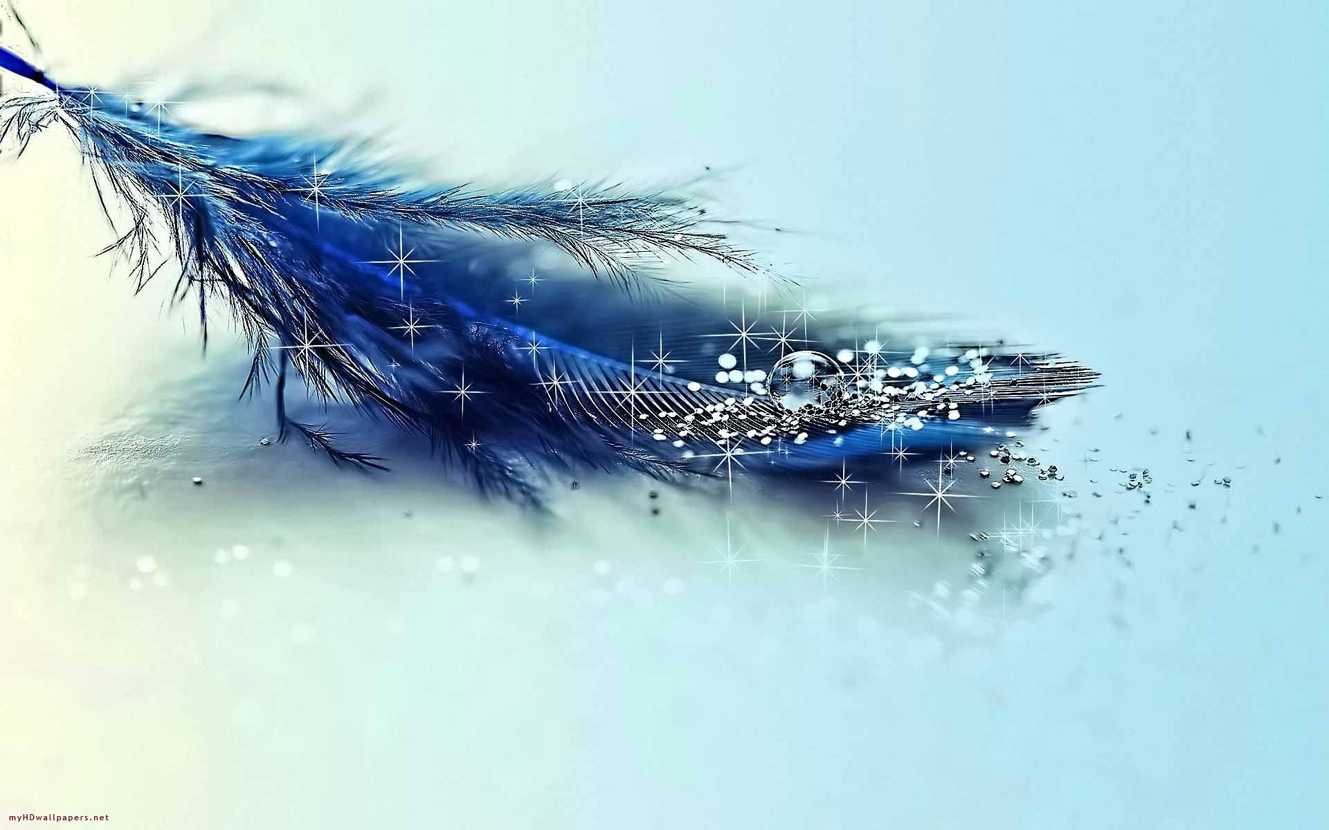 Free Magic Desktop Wallpaper Hd Wallpapers Download And New 3d Blue Feather Cool Blue Wallpaper Pictures