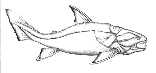 Dunkleosteus Monster Fish Coloring Pages Color Luna Fish Coloring Page Coloring Pages Monster Fishing