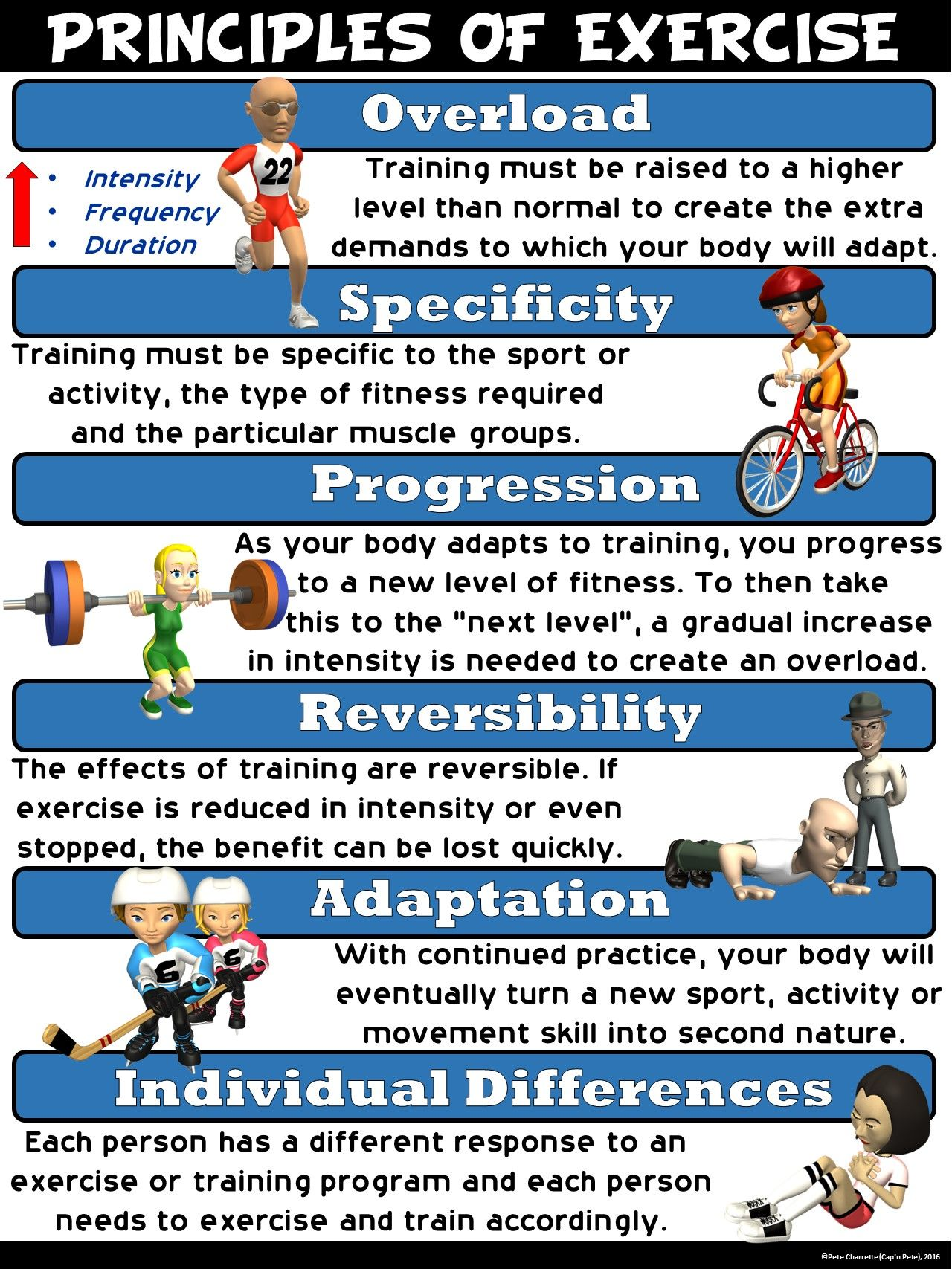 Pe Poster Principles Of Exercise Elementary Physical Education