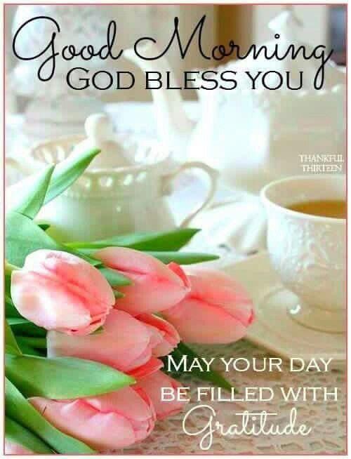 Good Morning My Friends Good Morning Morning Blessings Good