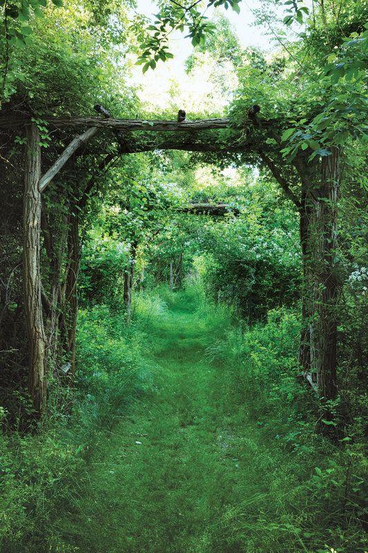 Le Jardin Sauvage D Anna Wintour Vackra Tradgardar