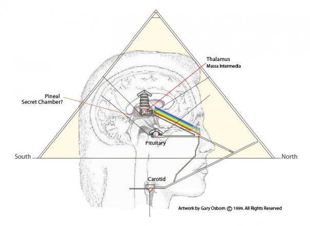 Meditation Pyramids Uses And Benefits Pineal Gland Spirituality