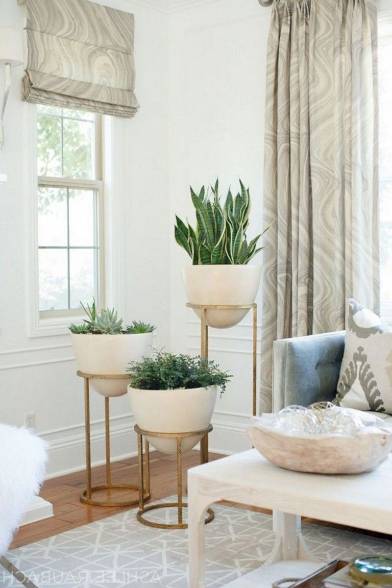 23 handsome living room plants ideas for the living room