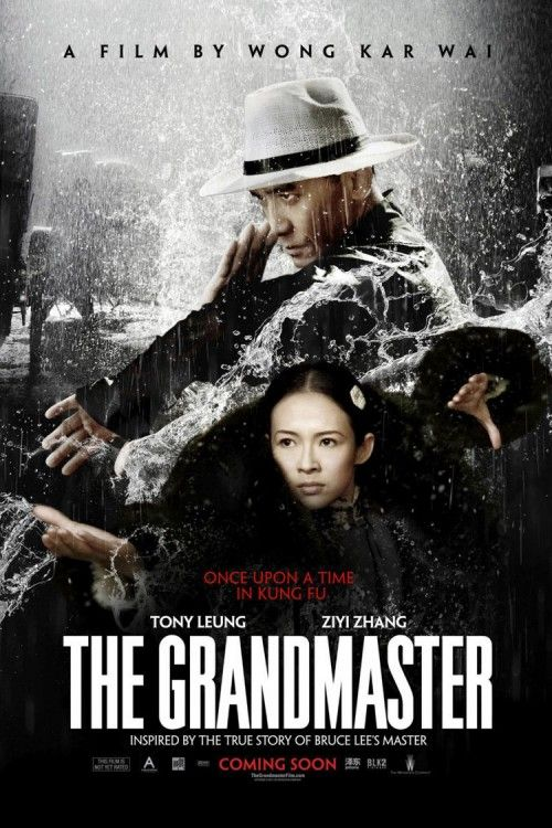 The Grandmaster Dvd Release Date The Grandmaster Martial Arts Movies Movie Posters