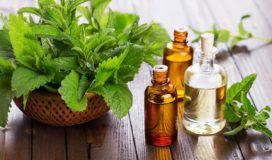 peppermint-oils-best-uses-3