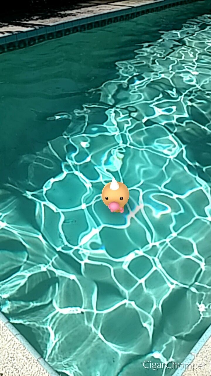 Pokemon in the pool