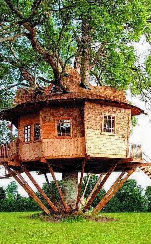 Noreha Baharom - Google+ | case sull\'albero | Pinterest | Baumhaus ...