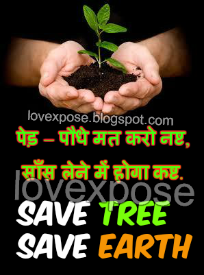 Save Tree Hindi Slogan For Earth Day Environment Lovexpose