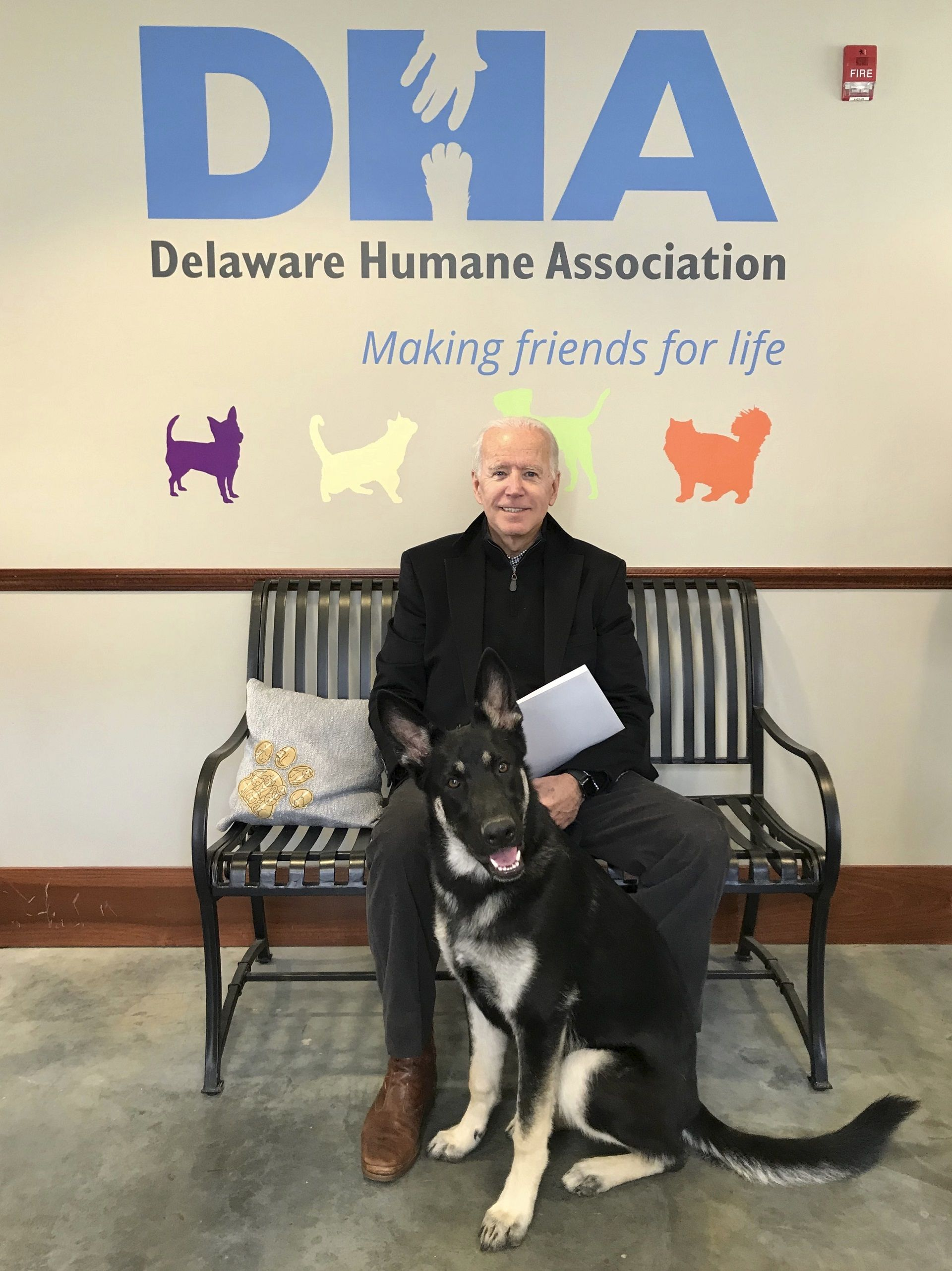 Biden Family Adopts New Pup Named Major Delaware Humane