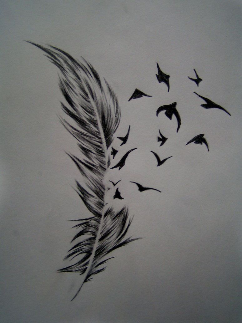 Birds Of A Feather Tattoo Meaning Feather With Birds Tattoo Feather Tattoo Design Feather Tattoo Meaning