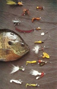 Essential crappie blue gill and perch rigs panfish for Bluegill fishing lures