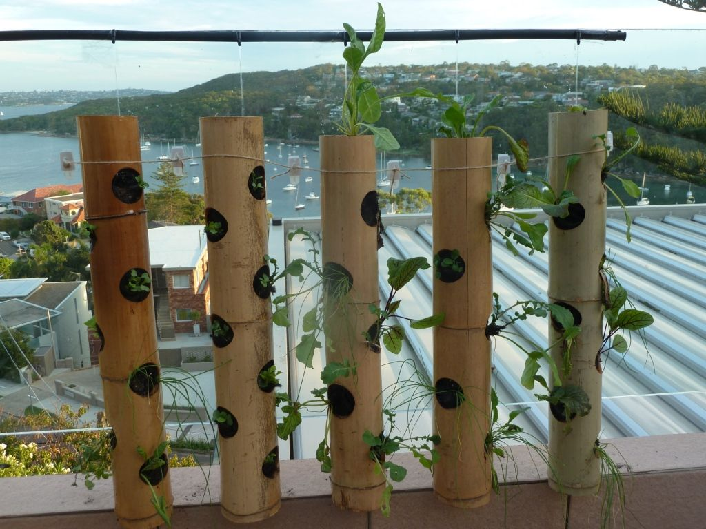 VERTICAL GARDENING: Turn the balcony pot plant on it\'s head! These ...