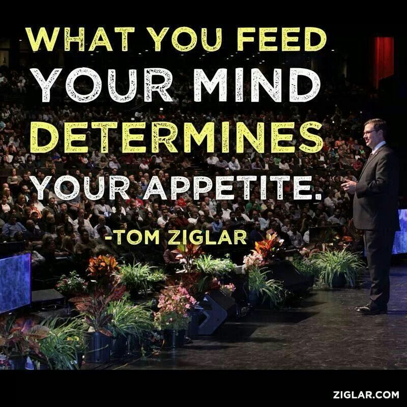 What you feed your mind