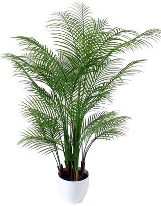 Artificial Plants Artificial Plants Artificial Plant Wall Artificial Plant Arrangements