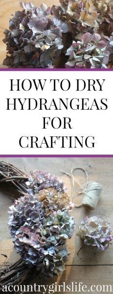 How to Dry Hydrangeas and Make a Dried Hydrangea Wreath  A Country Girls Life  DIY How to Dry Hydrangeas for Crafting  Make a Dried Hydrangea Wreath  A Country Girls Life