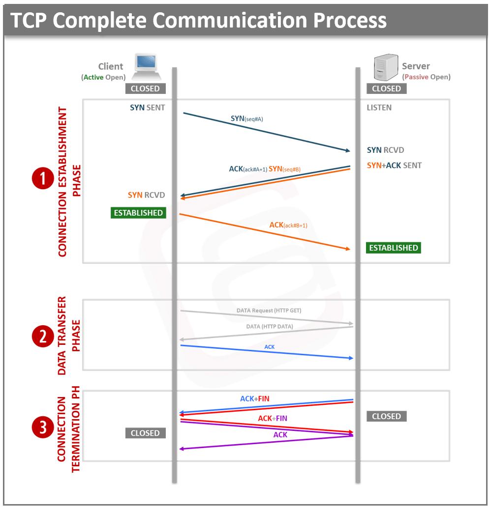Tcp Three Way Handshake Diagram Derbi Senda Drd 50 Wiring 3 Process Atech Waqas Karim Ccna Pinterest