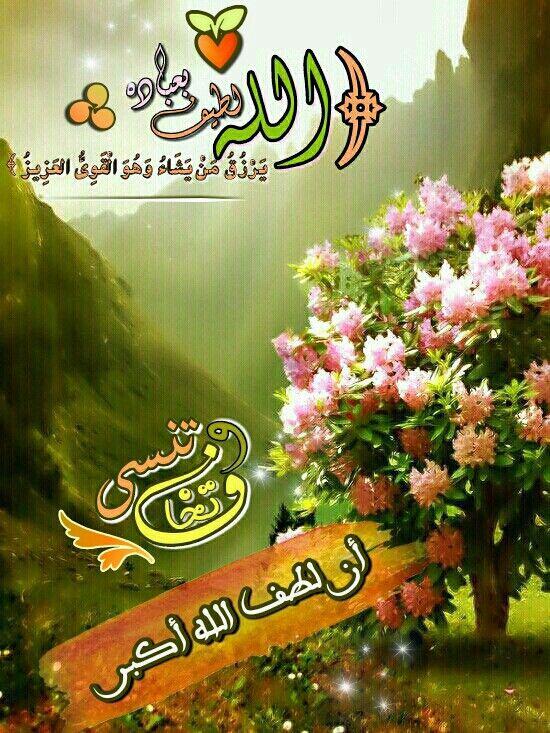 تخاف وتنسى أن لطف الله أكبر بسم الله الرحمن الرحيم الله لطيف بعباده يرزق من يشاء وهو القوي العزيز Allah Hadith Quran