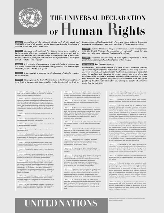 Universal declaration of human rights essay
