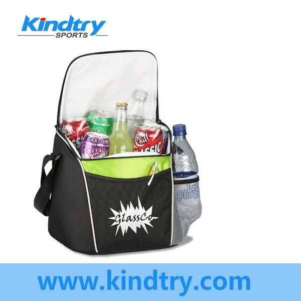 Insulated Cooler Bag for can storage
